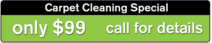 Carpet Cleaning Fort Lauderdale Ft Lauderdale Cleaning