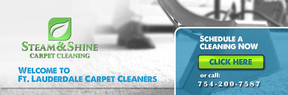 Amazing Carpet Cleaning Fort Lauderdale  Ft Lauderdale Cleaning Services 33311